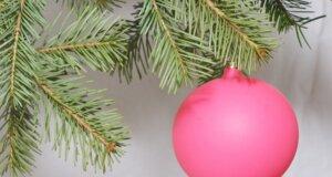 Frisch ins Neue Jahr – So werden Sie den Weihnachtsbaum am besten los