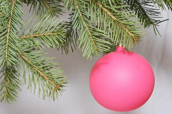 Frisch ins Neue Jahr - So werden Sie den Weihnachtsbaum am besten los