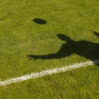 Bundesliga: Thomas Schaaf soll 96 retten