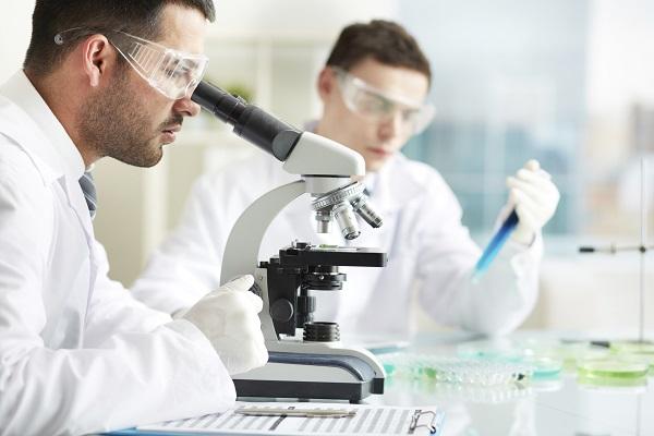 Bakterien produzieren Bio-Tinte