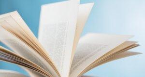Neues Buch über Tyrannenkinder – Experten sind sich uneins
