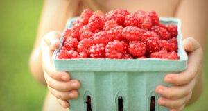 Mehr Himbeer: Darum lieben wir die rote Frucht