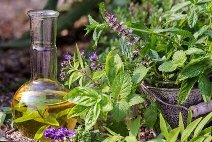 Kräuter, Blumen und Heilpflanzen