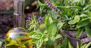 Naturheilkunde und Kräuter als Hilfsmittel aus der Natur