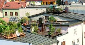 Dachterrassen – Chill-out-Zonen im XXL-Format