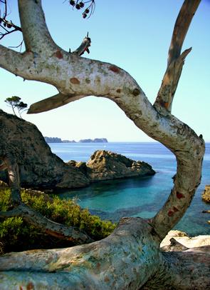 Ibiza: Ein Traum – vor allem im Herbst