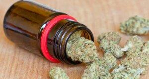 Cannabis aus der Apotheke: Nachfrage nach medizinischem Marihuana steigt
