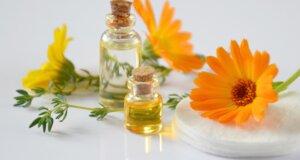 Calendula: Heilsamer Wirkstoff in Arznei und Kosmetik