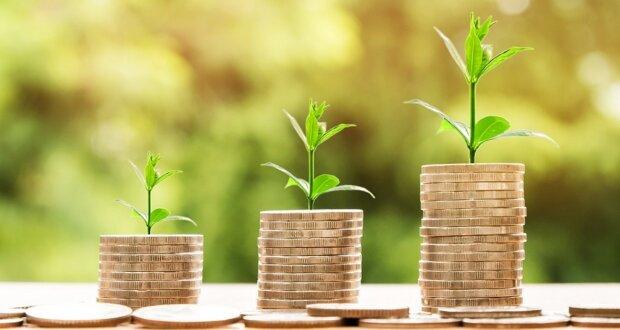 Der Online Kredit: Vorteile und Merkmale